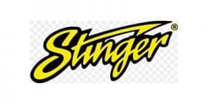 Brand-Logo-stinger